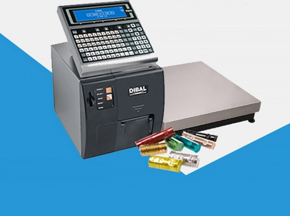 DIBAL Solution for a Company Dedicated to Comprehensive Cash Management