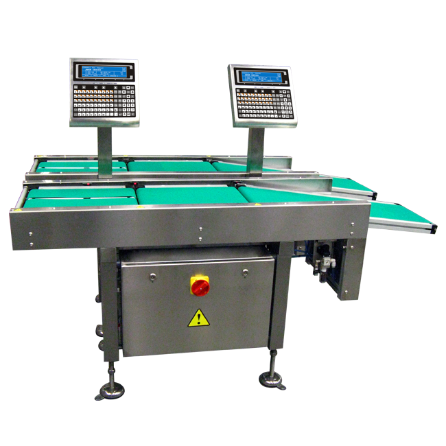 Special automatic checkweigher Dibal