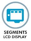 Segments LCD Display