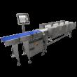 Clasificadoras automáticas por peso Serie GW-4000+