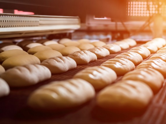 Dibal solutions for the bakery industry